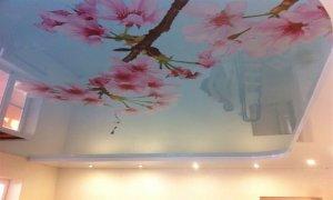 натяжной глянцевый потолок с рисунком